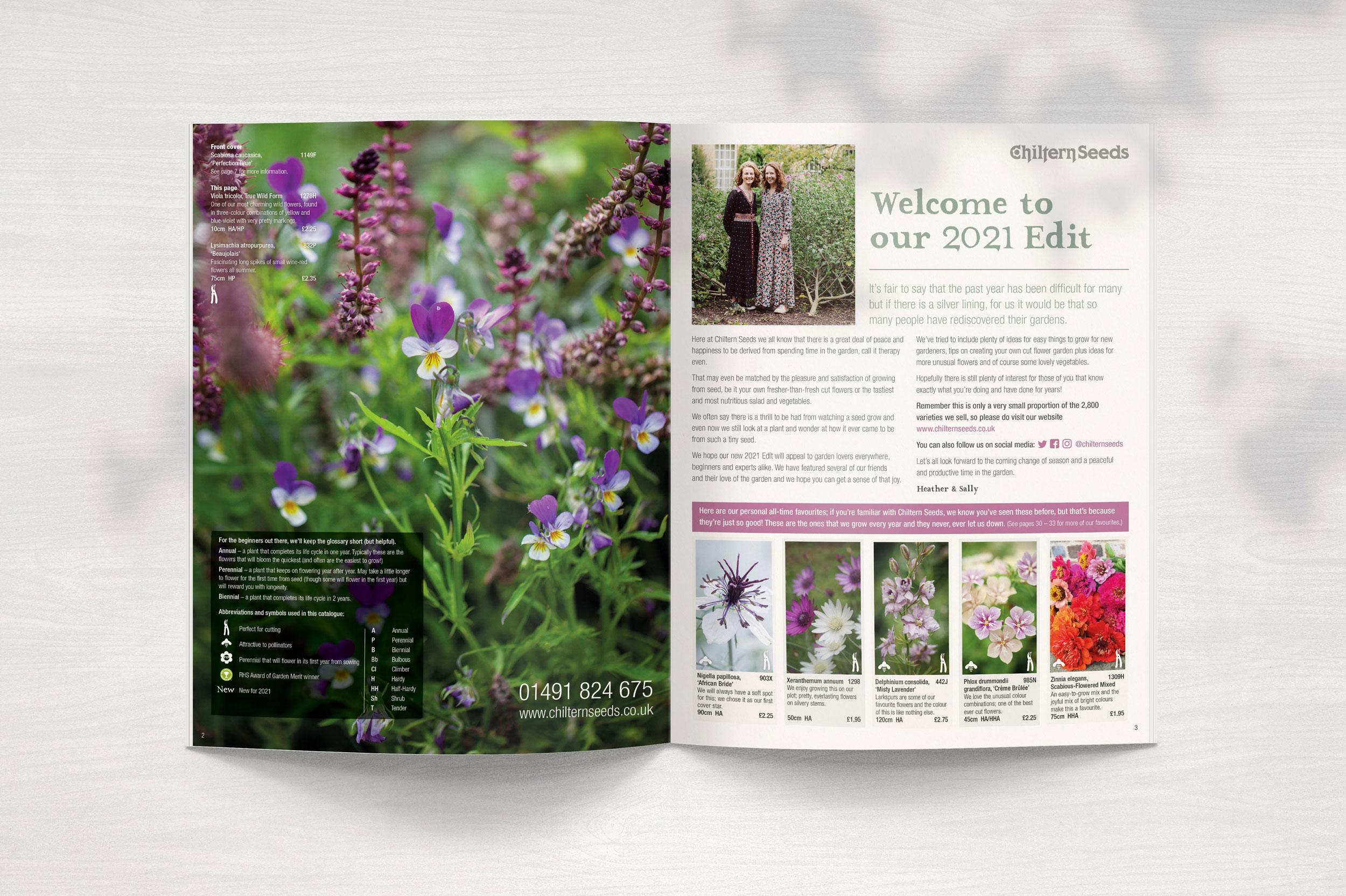 Welcome Magazine Spread